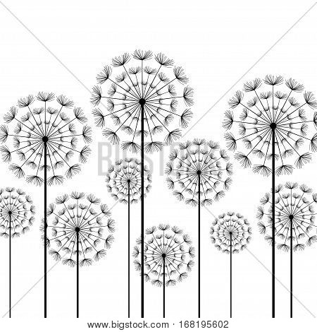 Black stylized dandelions isolated on white background. Floral stylish trendy wallpaper with summer or spring flowers. Modern backdrop. Beauty of nature. Vector illustration