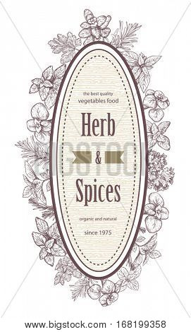 Herbs and spices label. Engraving illustrations for packaging. Vector sketches of vegan food. Hand drawn plants.