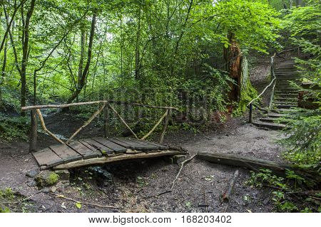 Old wooden bridge over the creek in the forest. Wooden stairs rising up the hill. Green trees.