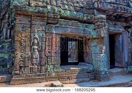 Details of stone carvings and reliefs of Ta Prohm Temple, Angkor Historical Park, UNESCO World Heritage, Cambodia.