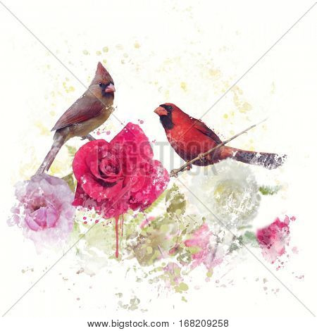 Digital Painting of Male and Female Northern Cardinals