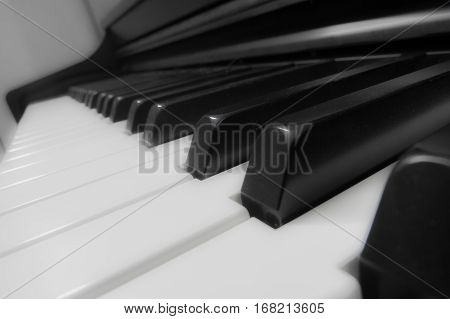 A bright close-up of many piano keys with shining effects.
