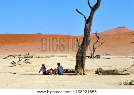 DEADVLEI NAMIBIA - JAN 29 2016: Tourists have a rest in shadow of the dead camelthorn tree in Deadvlei Sossusvlei. Namib-Naukluft National Park Namibia Africa