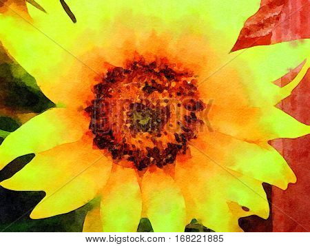 Very nice original Watercolor painting Of a Sunflower