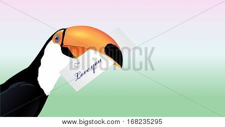 Vector Toucan head with Valentine card Love you