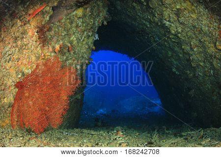 Underwater cave swimthrough