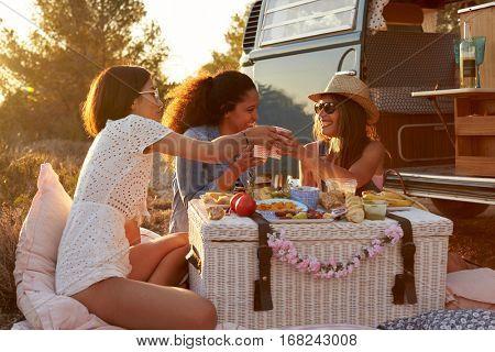 Three female friends make a toast at a picnic