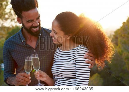 Romantic couple making a toast outdoors, arm around
