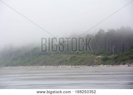 Pacific coast on Kalaloch Campground, Washington USA