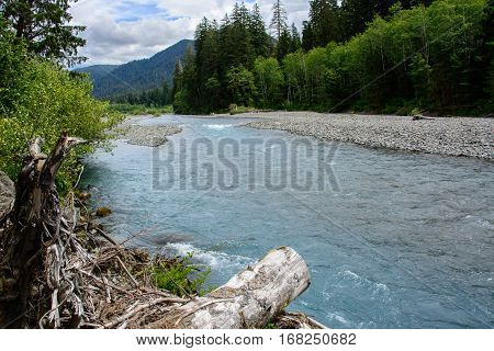 Broad Hoh River in Olympic National Park, Washington, USA