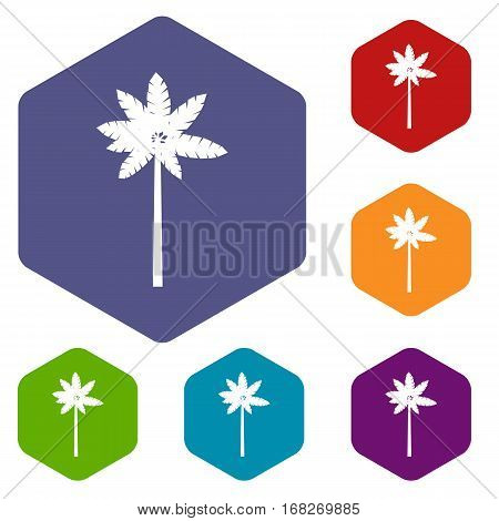 Palm woody plant icons set rhombus in different colors isolated on white background