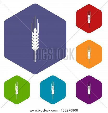 Stalk of ripe barley icons set rhombus in different colors isolated on white background