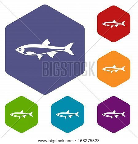 Herring fish icons set rhombus in different colors isolated on white background