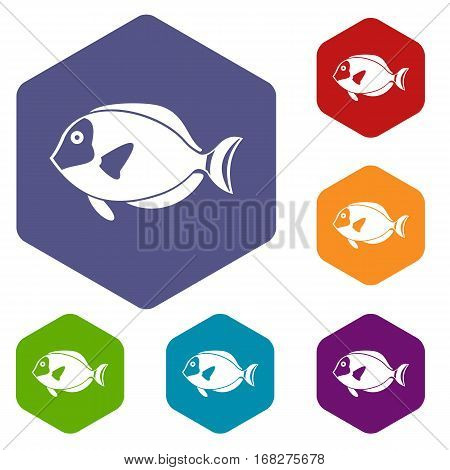 Surgeon fish icons set rhombus in different colors isolated on white background