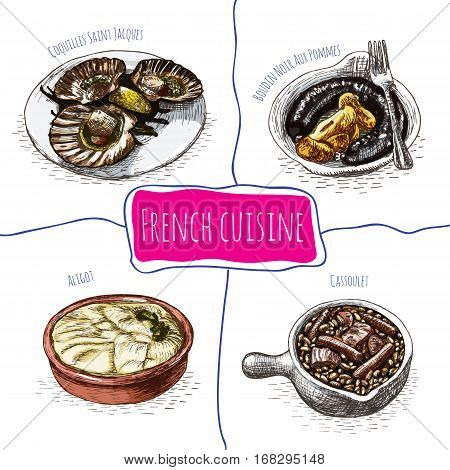French menu colorful illustration. Vector illustration of French cuisine.