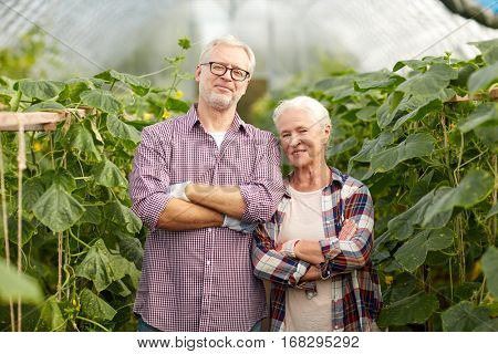 farming, gardening, agriculture and people concept - happy senior couple at farm greenhouse