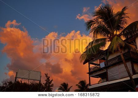 palm trees silhouetted against Mauritius sunset