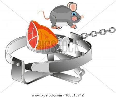 Trap with bait and rat on white background is insulated