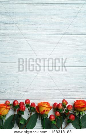 Hypericum, roses and rowan on white wooden background