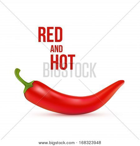 Red chilli pepper isolated on white background. Healthy organic food. Vector