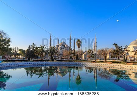 Blue mosque with reflection on fountain in sultanahmet square.