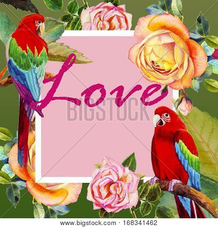 Painting watercolor illustration realistic postcard love,book cover colorful flower of Macaw bird roses beauty and trendy seamless floral in green color background.