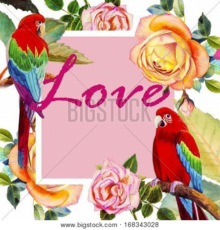 Painting watercolor illustration realistic postcard love,bookcover colorful flower of Macaw bird roses beauty and trendy seamless floral in white background.