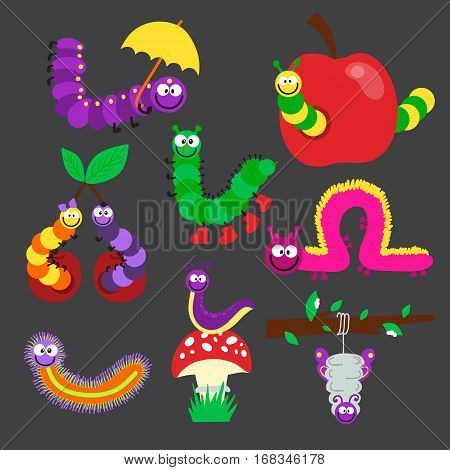 Cartoon caterpillar insect vector illustration. Element of fauna fun happy animal character graphic. Nature design colorful garden bug with many legs.