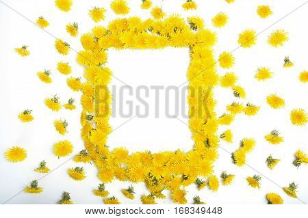 Frame Made Of Yellow Dandelions On A White