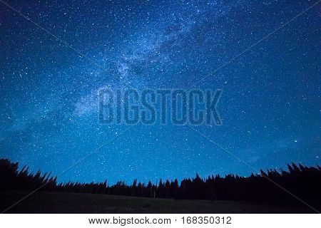 Blue dark night sky with many stars above field of trees. Yellowstone park. Milkyway cosmos background