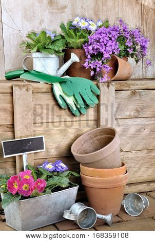 gardening accessories and flowerpots in a shed