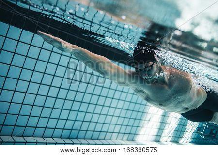 Pro Swimmer Practising In Swimming Pool