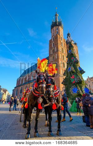 Krakow, Poland - December 16, 2016: Carriages for riding tourists on the background of Mariacki cathedral at main square in old city