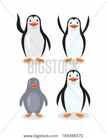 Funny emperor penguins set isolated on white. Blue penguin with white belly. Animal adorable penguin character. Charming penguin. Wildlife character. Adult and child. Vector illustration