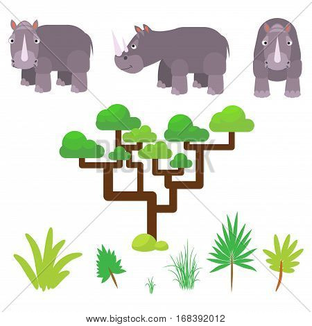 Rhino and savannah plants set cartoon vector illustration on white. Rhinoceros half-face and full face poses.