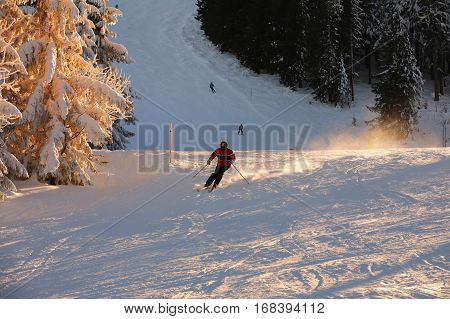 Skier with helmet skiing down the slopes.The ski on a hill trees covered with snow bathed in a golden sunset. View of snow covered ski in the mountains.
