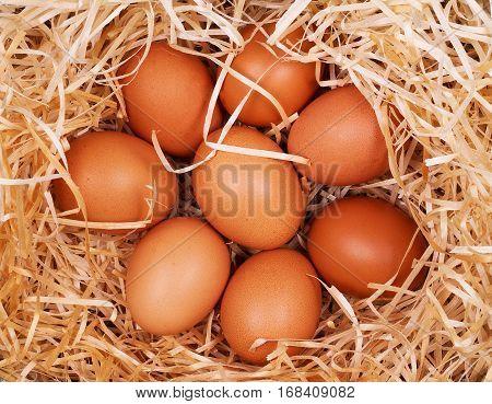 Eggs on wooden background Huevos, Jajka, Yumurta, Vejce, Jajca