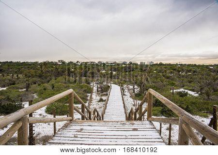 Guardamar Dunes Alicante Landscape of Guardamar Dunes Alicante, Spain after a historic snowfall