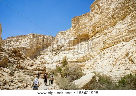 NEGEV DESERT ISRAEL - NOVEMBER 24: The Nahal Zin near the kibbutz Sde Boker and Midreshet Ben-Gurion in Negev Desert Israel on November 24 2016
