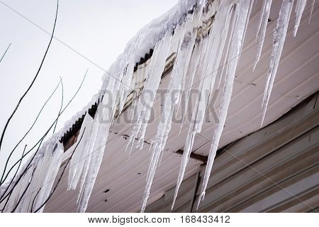 Dangerous icicles hanging on a house roof