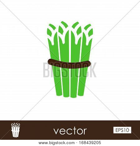 Asparagus outline icon. Vegetable vector illustration eps 10
