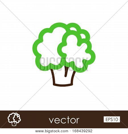 Cauliflower outline icon. Vegetable vector illustration eps 10