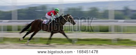 Finish horse race for the prize of Bolshoi Osenni in Pyatigorsk,Northern Caucasus, Russia.