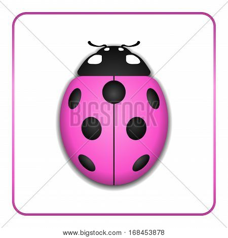 Ladybug Realistic Cartoon Icon