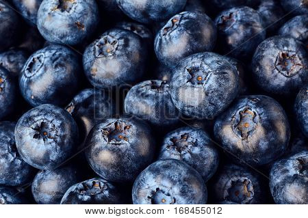 Background of blueberries close up. Heathy food