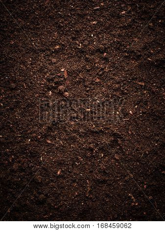 Texture of the peat soil. Nature background