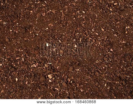 Texture of the soil. Nature background. Ground