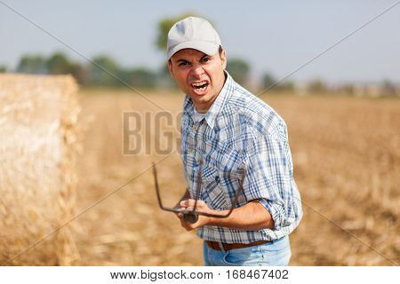 Angry farmer in a meadow