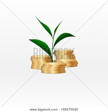 Growing green plant on coin money for finance and banking concept