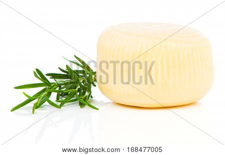whole cheese with rosemary isolated on white background